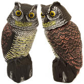 Woodside Owl With Rotating Head