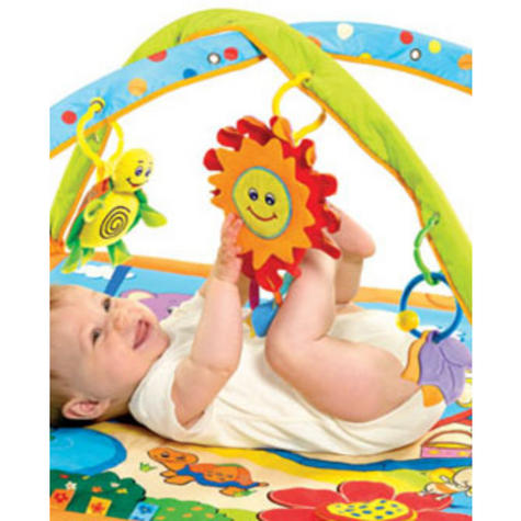 Tiny Love Gymini Sunny Day Play Gym | Musical Toys | Baby Tummy/Play-Time Mat | Mirror | New Thumbnail 2