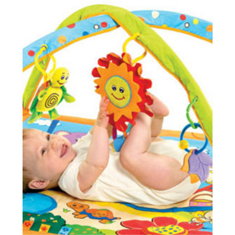 Tiny Love Gymini Sunny Day Play Gym | Musical Toys | Baby Tummy/Play-Time Mat | Mirror | New Thumbnail 5
