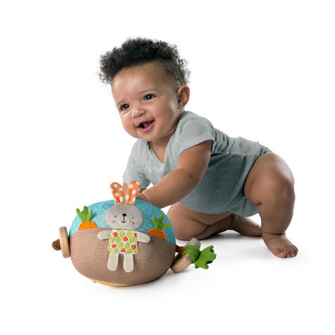 Bright Starts Garden Ball   Baby/ kid's Soft Plush Playtime Toy+Teether   With Sound   +3 Months Thumbnail 4