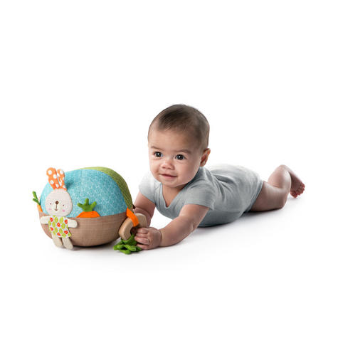 Bright Starts Garden Ball   Baby/ kid's Soft Plush Playtime Toy+Teether   With Sound   +3 Months Thumbnail 5