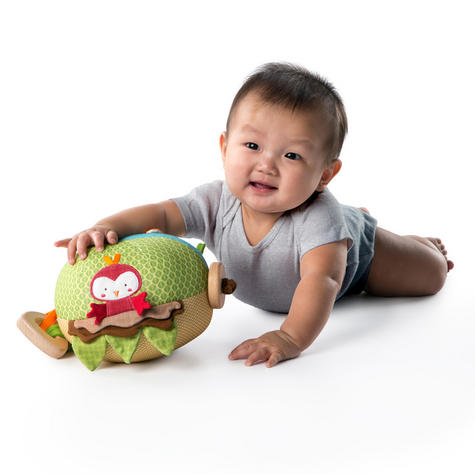 Bright Starts Garden Ball   Baby/ kid's Soft Plush Playtime Toy+Teether   With Sound   +3 Months Thumbnail 6