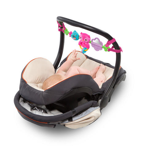 Bright Starts Busy Birdies Baby Girls Carrier Toy Bar   Clip on CarSeat/Carriers Thumbnail 5