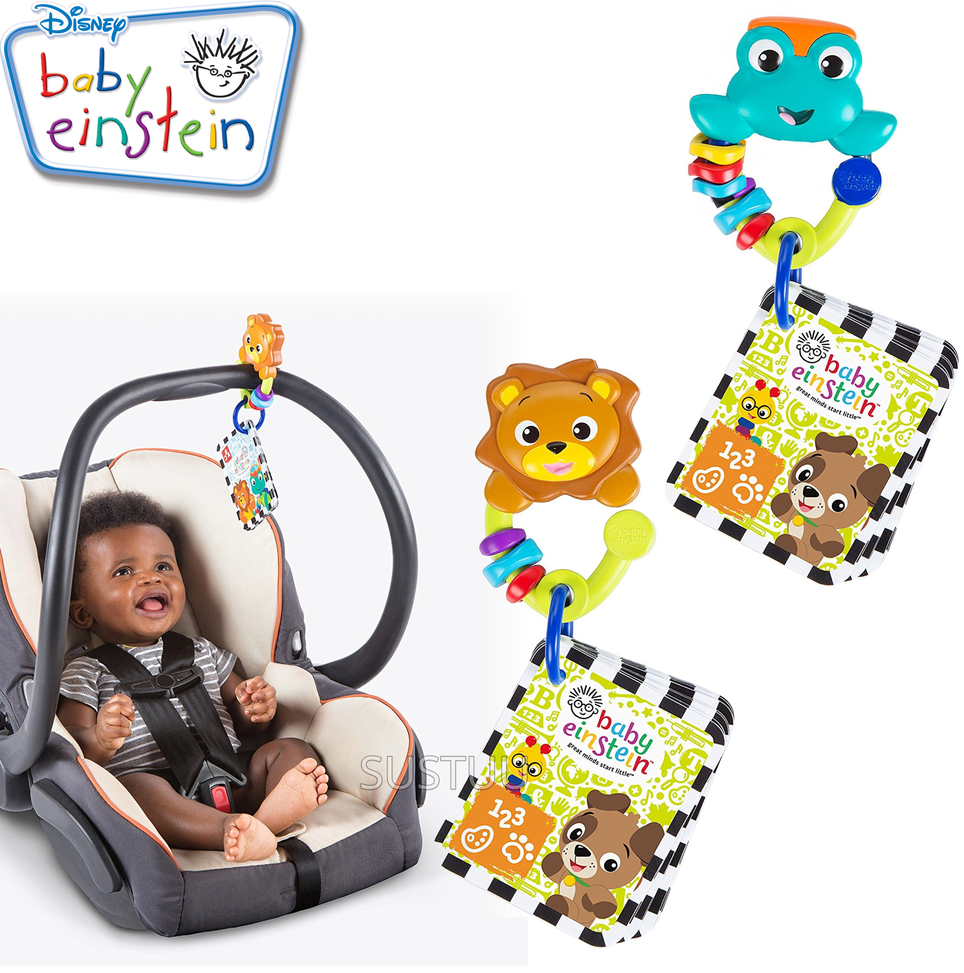 Baby Einstein World Around Me Discovery Cards | Kids Take Along Learning Fun Toy