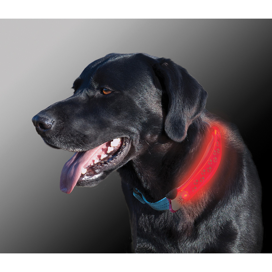 Nite Ize Nite Dawg Bright Red Led Pet Collar Cover Dog Cat