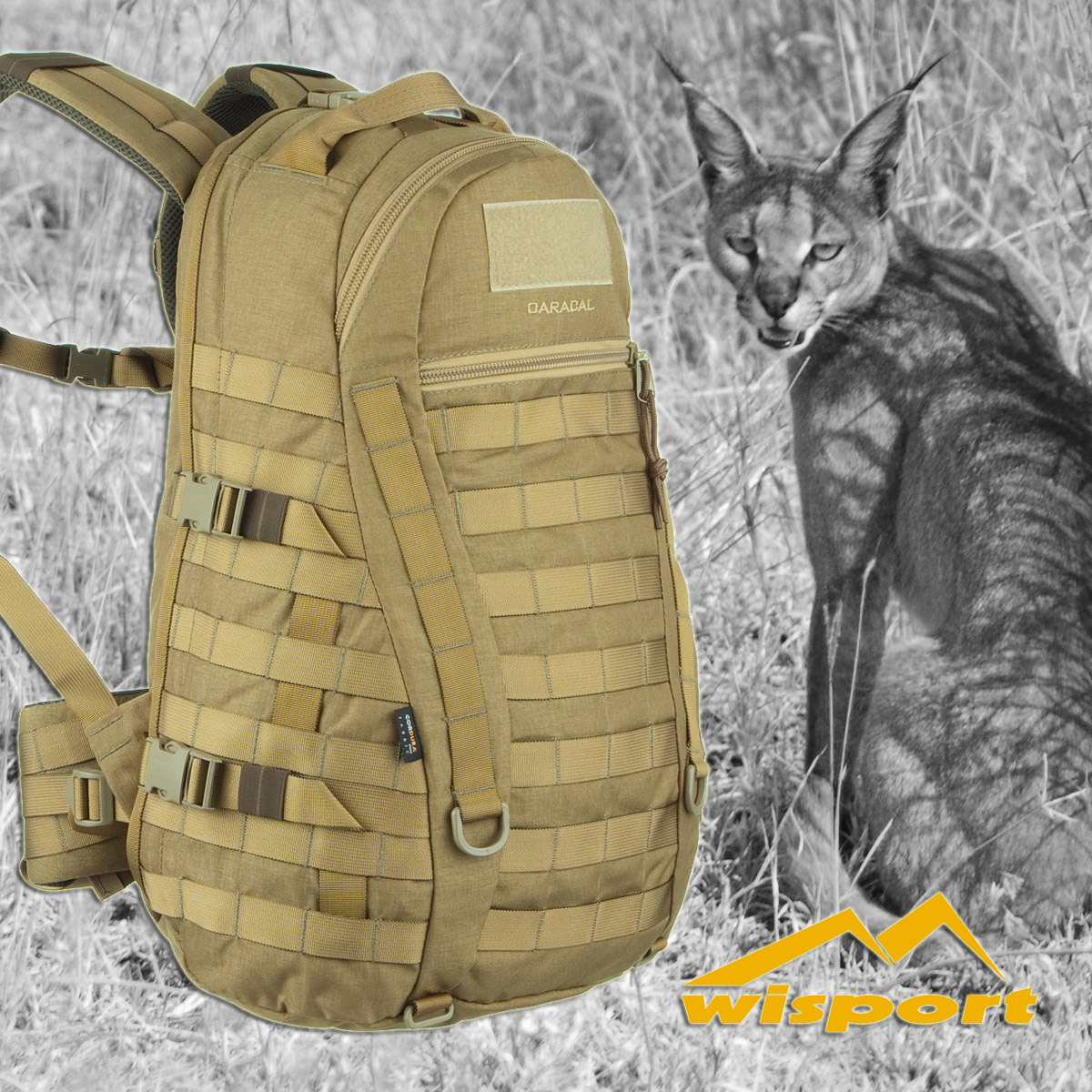 Caracal - new species of backpack at Military 1st