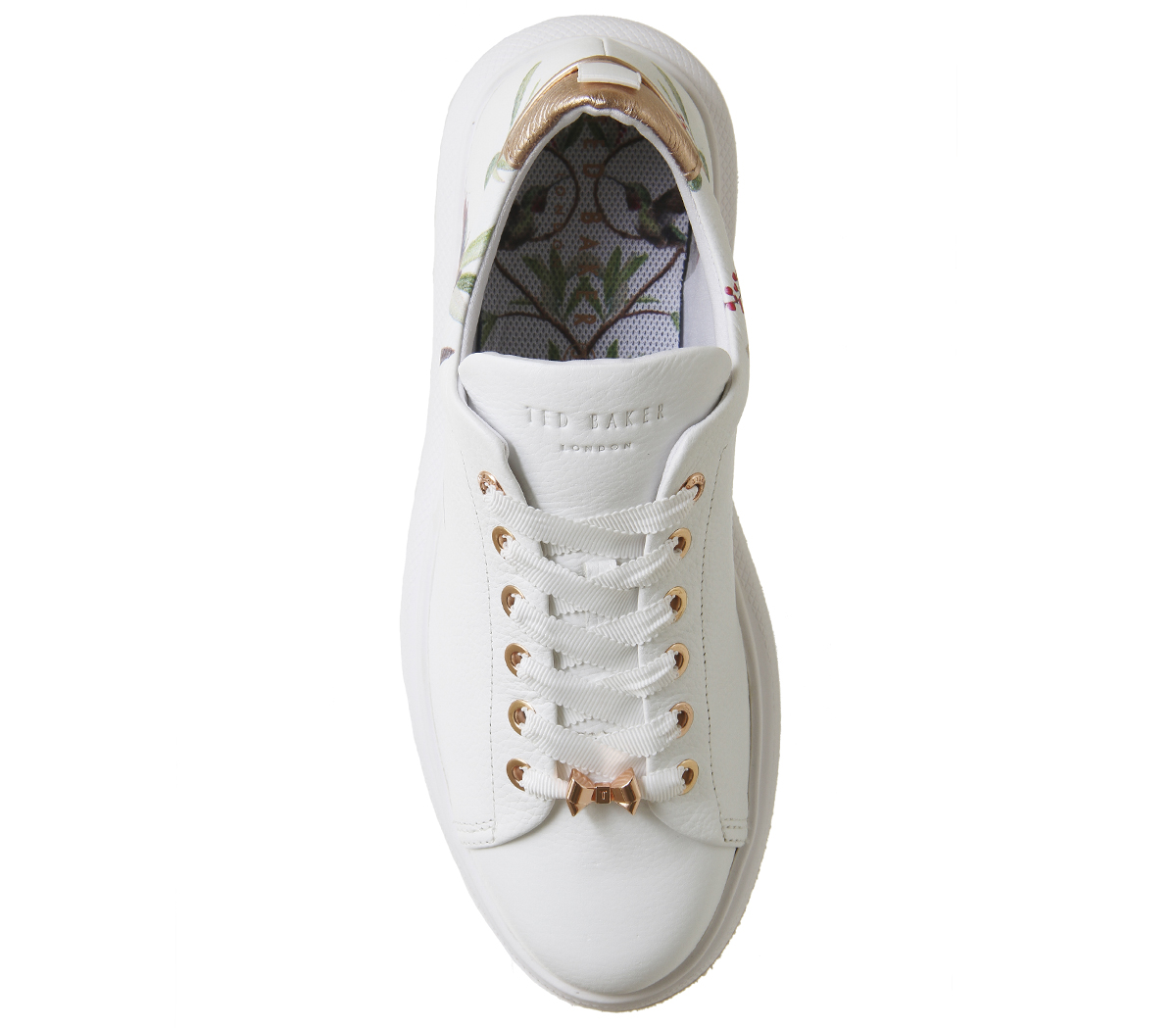 Chaussures femme Ted Ted Ted Baker PHOTO içi Baskets Highgrove Hummingbird Baskets Chaussures b6db47