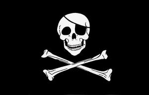 5'X3' Flag Pirate Skull & Crossbones Jolly Roger Pirates Party