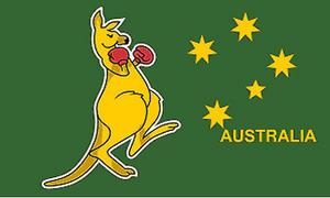 5Ft X 3Ft 5'X3' Flag Boxing Kangaroo Australia Australian