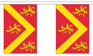 """Anglesey Bunting 3m Long With 10 Flags 9""""x6"""" Party Decoration"""