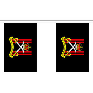 """Army Physical Training Corps Bunting 3m Long With 10 Flags 9""""x6"""""""