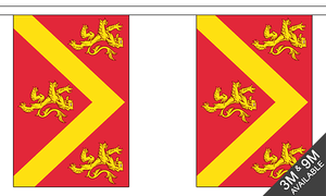 "Anglesey 3M Bunting With 10 Flags 9""X6"" English County Region"