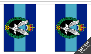Army Air Corps 9m Bunting (30 Flags) Military Banner