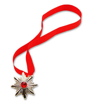 Vampire Medallion Necklace Count Dracula Halloween Fancy Dress
