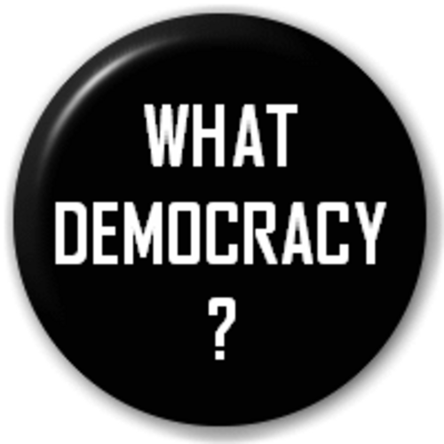 Small 25mm Lapel Pin Button Badge Novelty What Democracy?