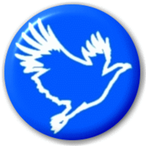 Small 25mm Lapel Pin Button Badge Novelty Blue Dove Peace