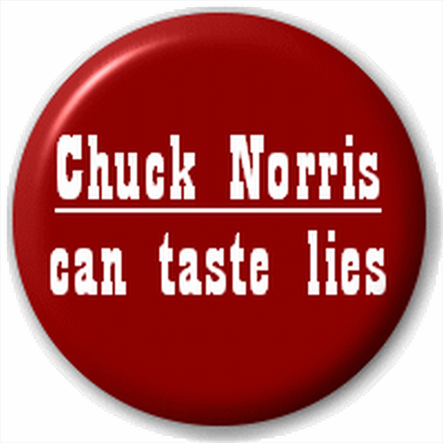 New Round Lapel Pin Button Badge Novelty Chuck Norris Quotes