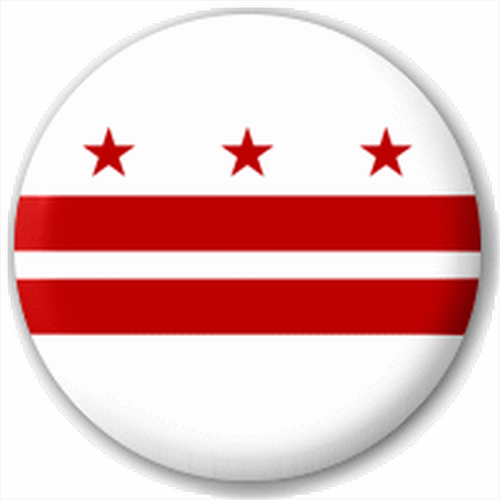 Small 25mm Lapel Pin Button Badge Novelty Washington Dc Flag