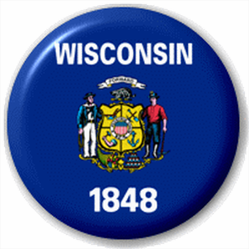 Small 25mm Lapel Pin Button Badge Novelty Wisconsin Flag