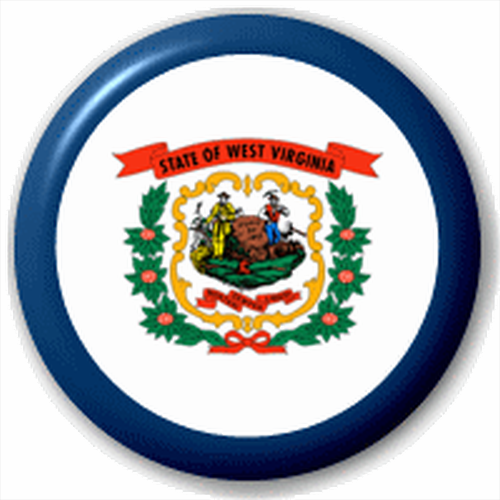 Small 25mm Lapel Pin Button Badge Novelty West Virginia Flag