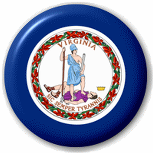 Small 25mm Lapel Pin Button Badge Novelty Virginia Flag