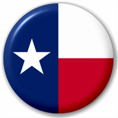 Small 25mm Lapel Pin Button Badge Novelty Texas Flag