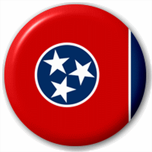Small 25mm Lapel Pin Button Badge Novelty Tennessee Flag