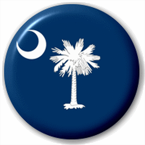 Small 25mm Lapel Pin Button Badge Novelty South Carolina Flag