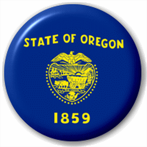 Small 25mm Lapel Pin Button Badge Novelty Oregon Flag