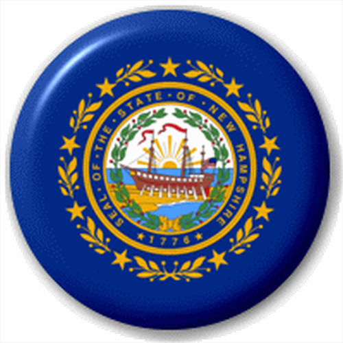 Small 25mm Lapel Pin Button Badge Novelty New Hampshire Flag