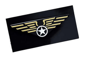 Aviator Pilots Wings Badge Flying Pilot Air Force Fancy Dress Pin