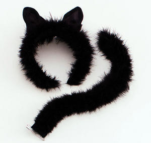 Black Cat Fancy Dress Set Ears & Tail Halloween Party