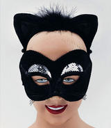 Black And Silver Cat Mask And Ears Animal Halloween Fancy Dress