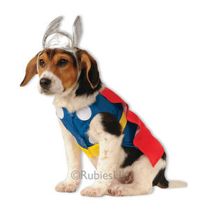 Thor Fancy Dress Costume Outfit Dog Pet Avengers Halloween Animal S To XL
