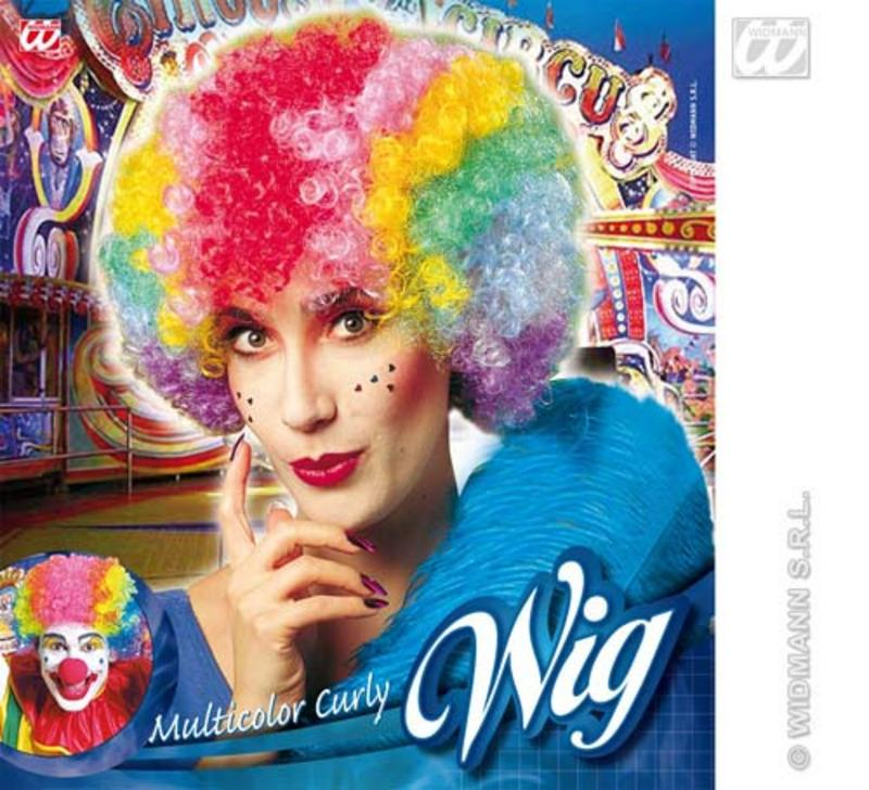 Rainbow Afro Wig Multi Coloured Gay Pride Clown Fancy Dress