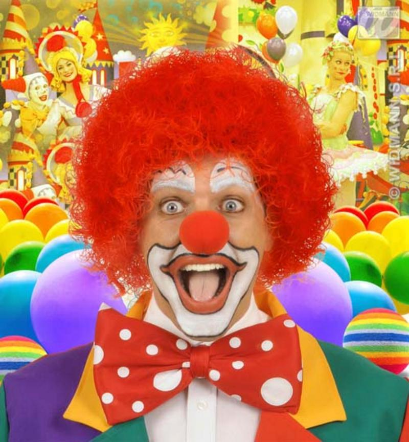 Red Curly Afro Wig Circus Clown Football Fan Fancy Dress
