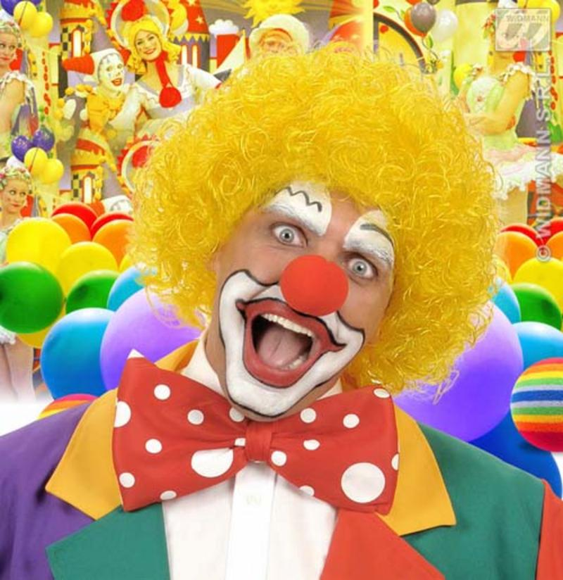 Yellow Curly Afro Wig Circus Clown Football Fan Fancy Dress