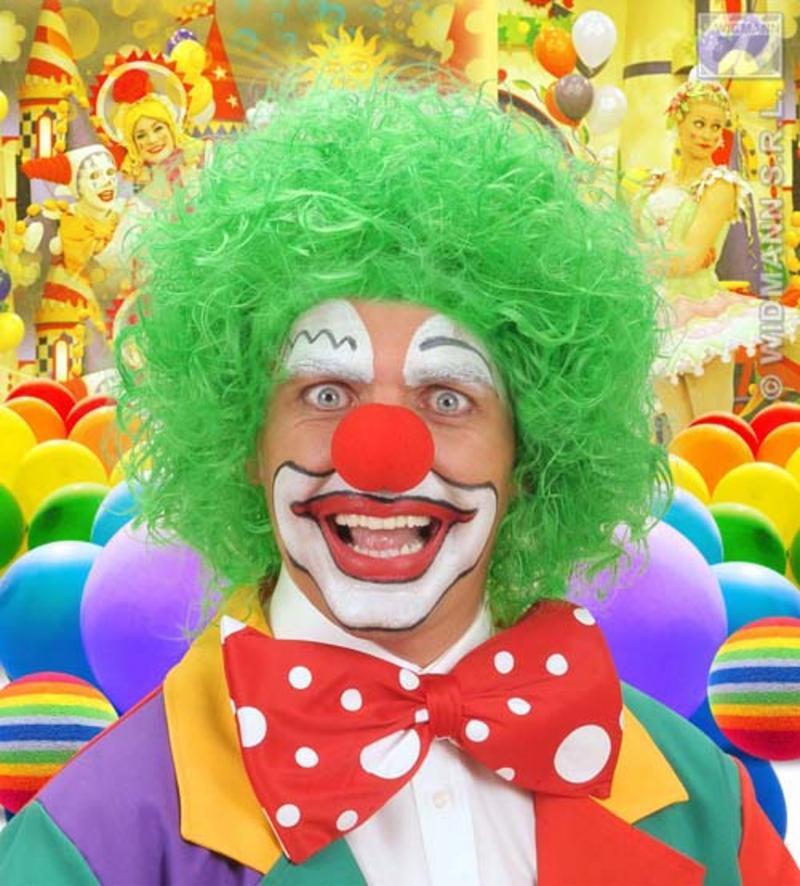 Neon Green Curly Afro Wig Circus Clown Football Fan Fancy Dress