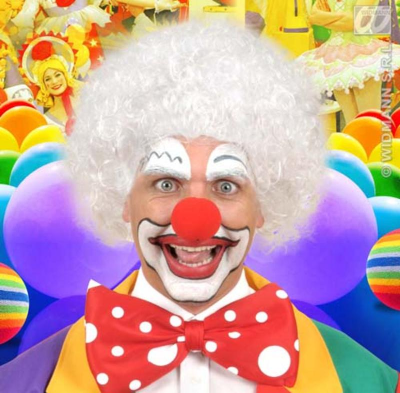 White Curly Afro Wig Circus Clown Football Fan Fancy Dress