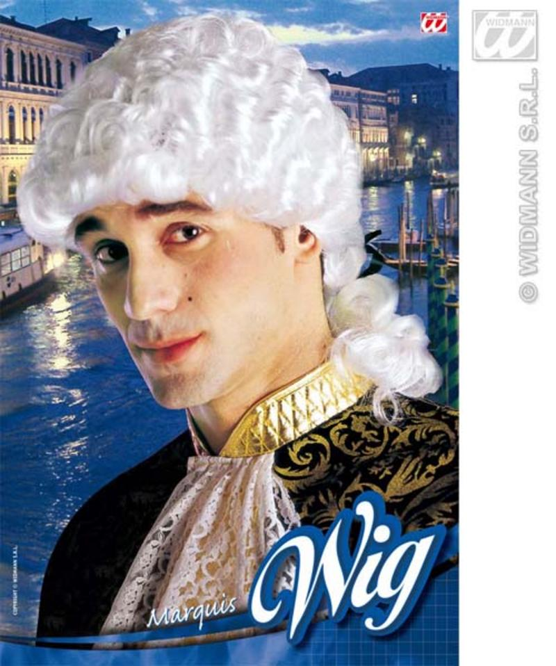 White Venetian Wig Barrister Muskateer Swords Man Prince Fancy Dress