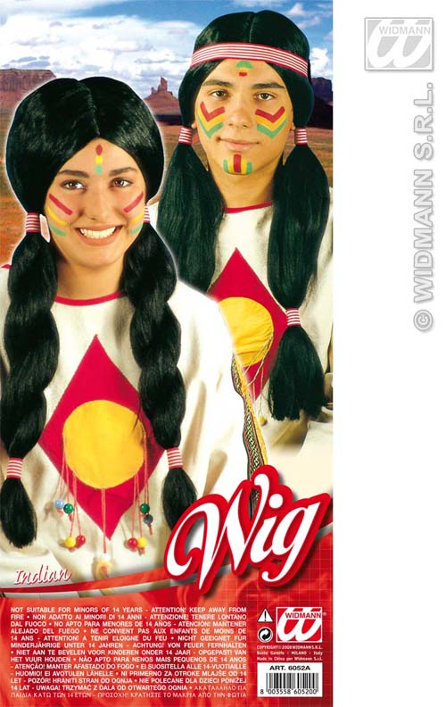 Unisex Long Black Indian Wig With Bunches Chief Tribesman Fancy Dress