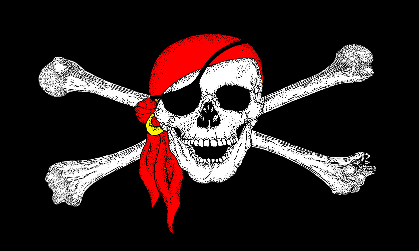 PIRATE FLAG 5/' x 3/' NO GUTS NO GLORY Skull and Crossbones Pirates Party TO CLEAR