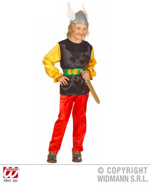 Childrens Asterix Viking Fancy Dress Costume 8-10 Yrs
