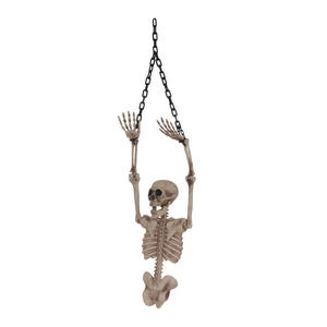 Skeleton Torso (Half) Halloween Party Decoration Prop
