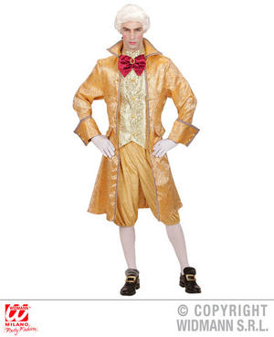 Mens Male Venetian Nobleman Fancy Dress Costume Outfit Adult