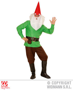 Mens Male Adult Green Garden Gnome Fancy Dress Costume Dwarf Outfit Adult
