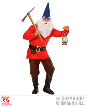 Mens Male Adult Red Garden Gnome Fancy Dress Costume Dwarf Outfit Adult