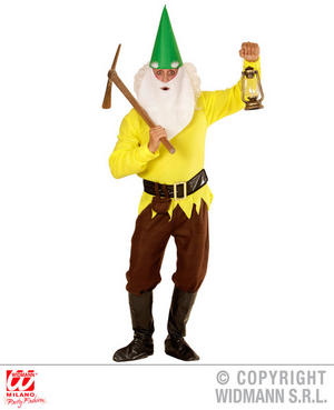 Mens Male Adult Yellow Garden Gnome Fancy Dress Costume Dwarf Outfit Adult
