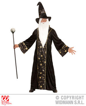 Mens Male Magical Great Wizard Fancy Dress Costume Outfit Adult