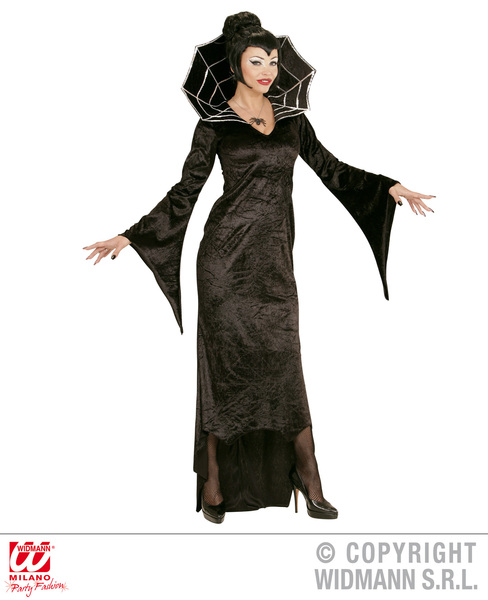 Womens Ladies Spider Witch Fancy Dress Costume Halloween Outfit Adult